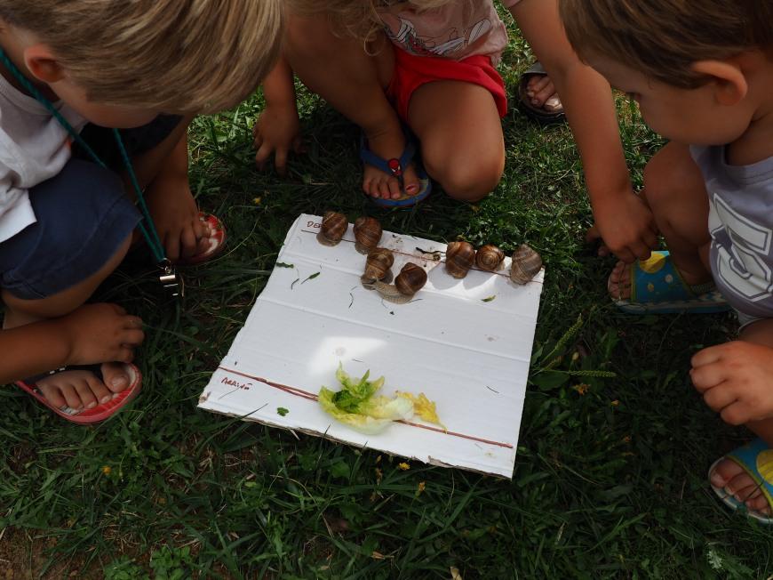 course aux escargots